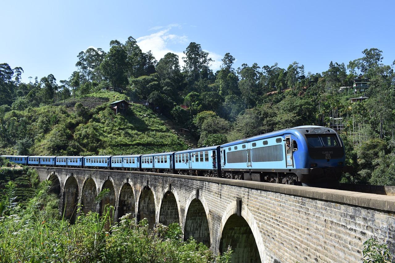 treno blu su ponte Ella